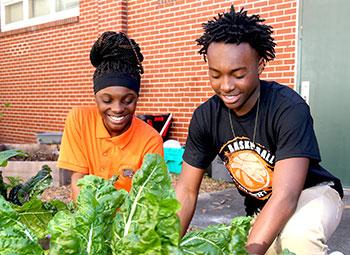 Matthew Gilbert Middle School students in their school's community garden.